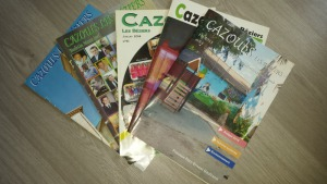 Questionnaire Bulletin Municipal