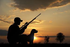Carte de chasse