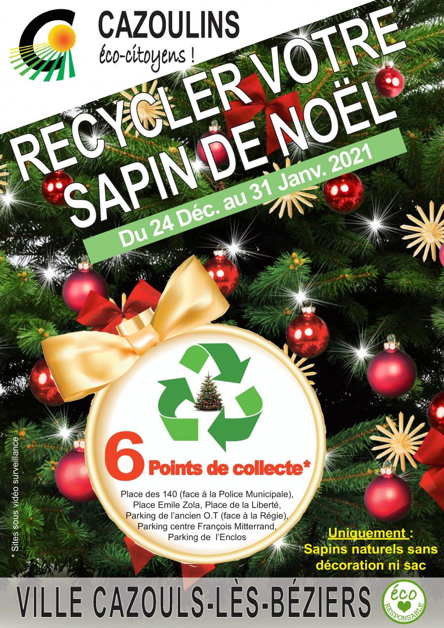 Collecte de sapins recyclés : les lieux de collecte
