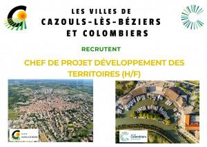 Offre d'emploi - CHEF DE PROJET DEVELOPPEMENT DES TERRITOIRES