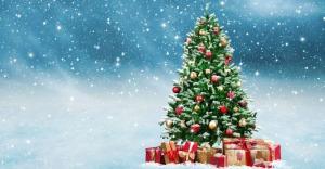 Rives d'Orb - Arbre de Noël